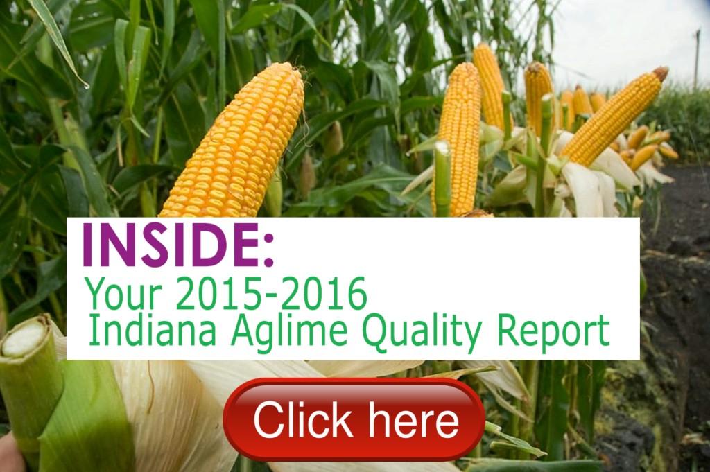 AGLIME.REPORT.15.16